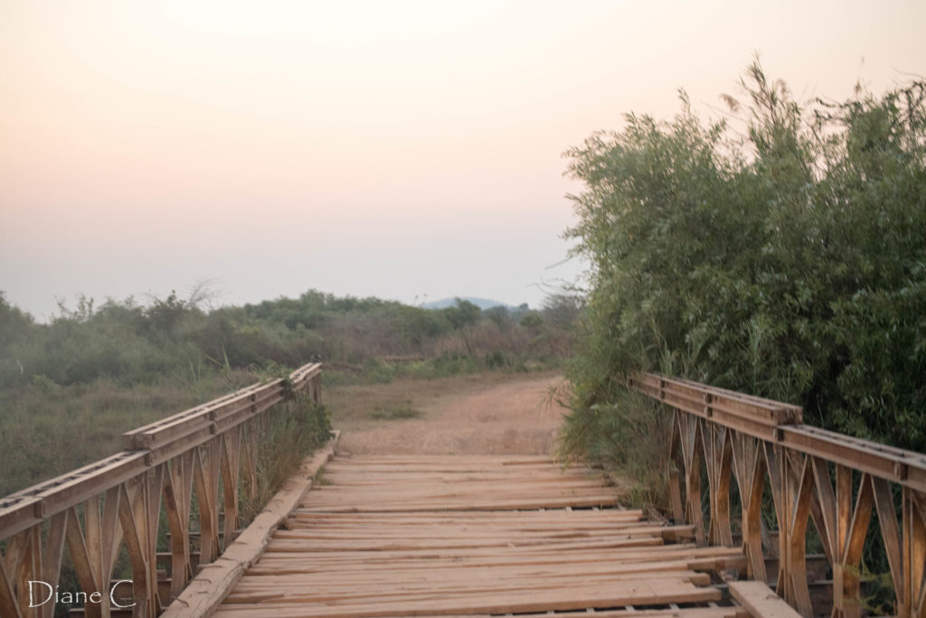 the bridge in Muyombe which was built by Malawians many years ago - reminds me of some of the old bridges in northern Malawi!  It needs some repair though!